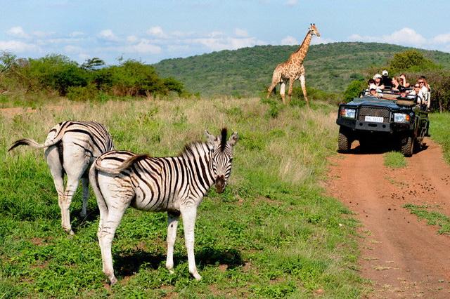 Африка Гамбия