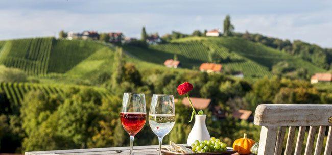 вина Австрии