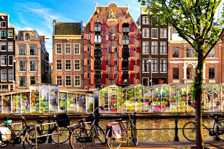 Bloemenmarkt, Рынок цветов в Амстердаме