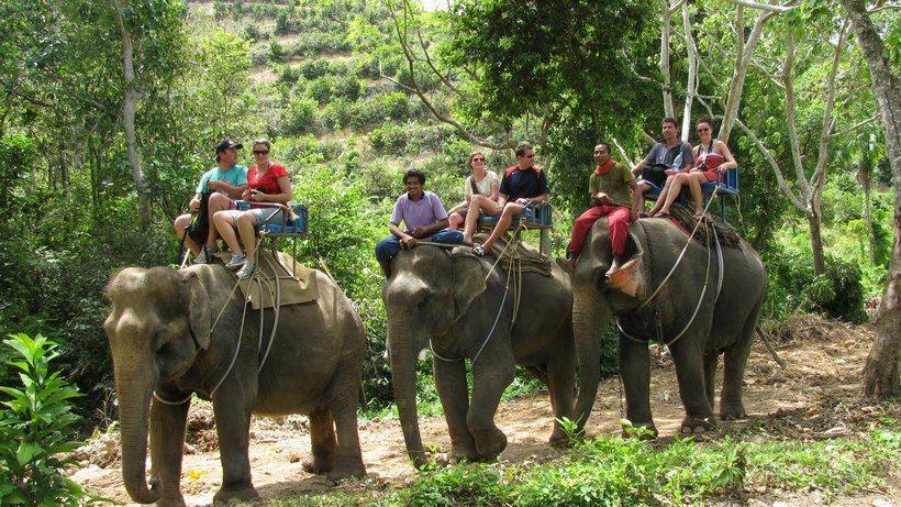 Катание на слонах, Самуи
