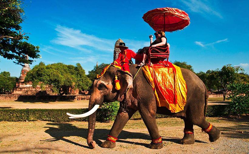 Турист катается на слоне в Таиланде