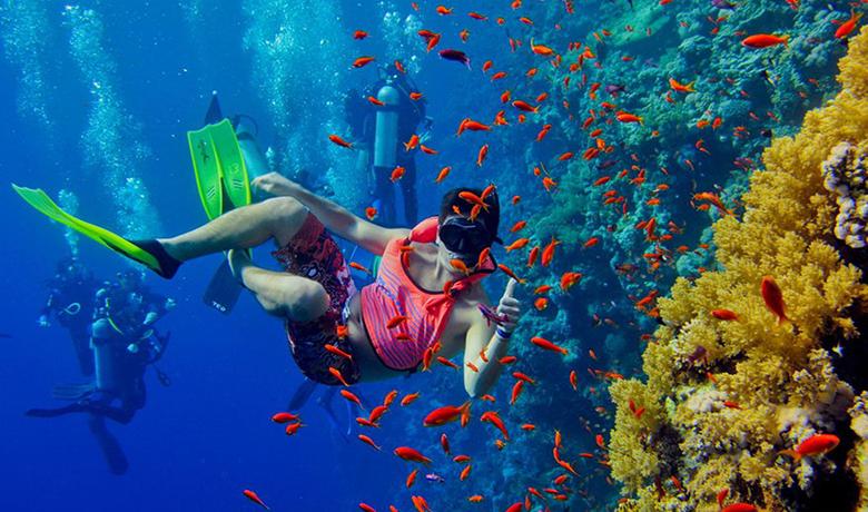 Курорт Нувейба Размеренный отдых в Египте и море с кораллами