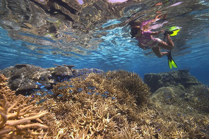Хаапай, королевство Тонга, Полинезия