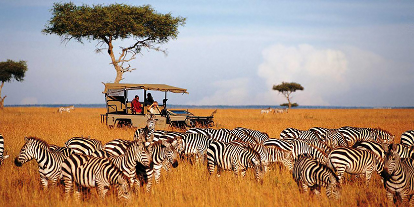 Фотосафари в Кении