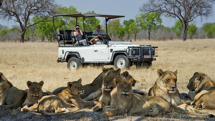 Сафари в Национальном парке в Зимбабве