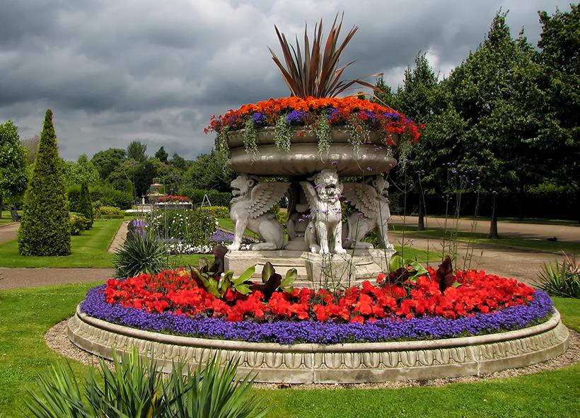 Клумба в Риджентс-парк в Лондоне