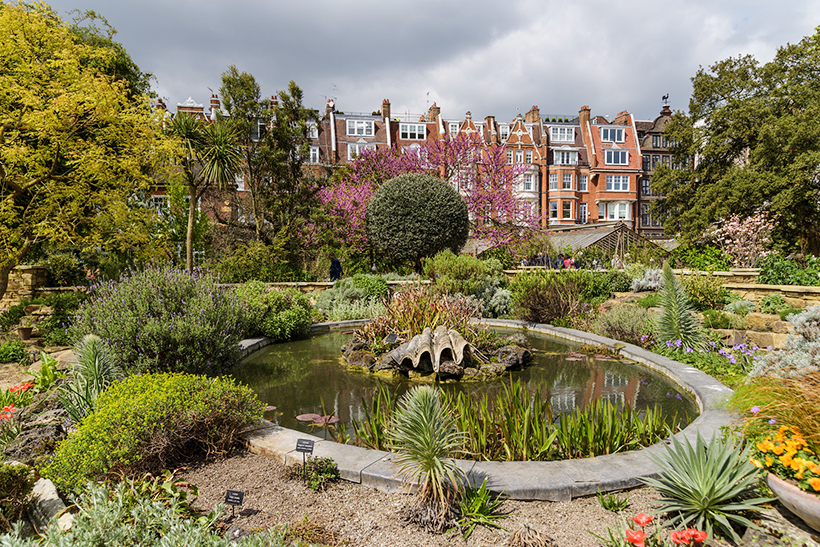 Аптекарский сад Челси (Chelsea Physic Garden)