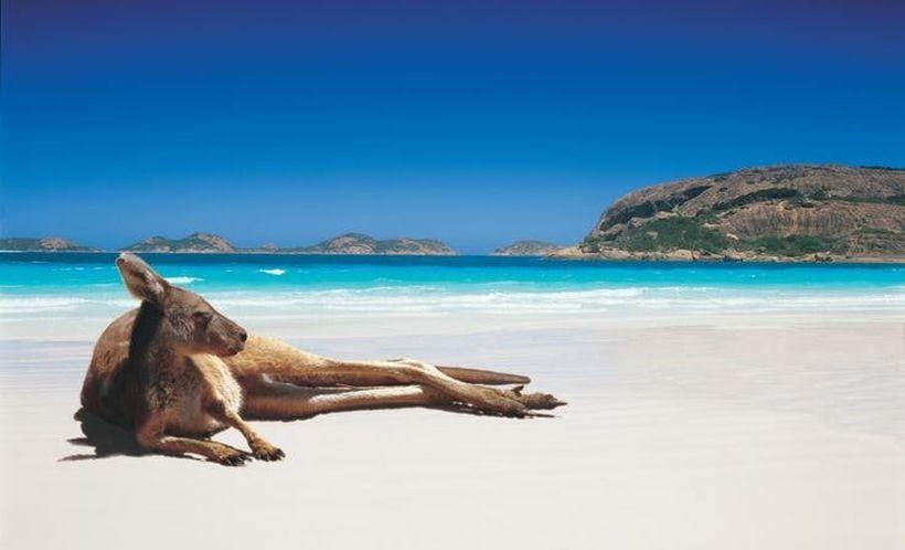 пляж Лаки бэй Австралия