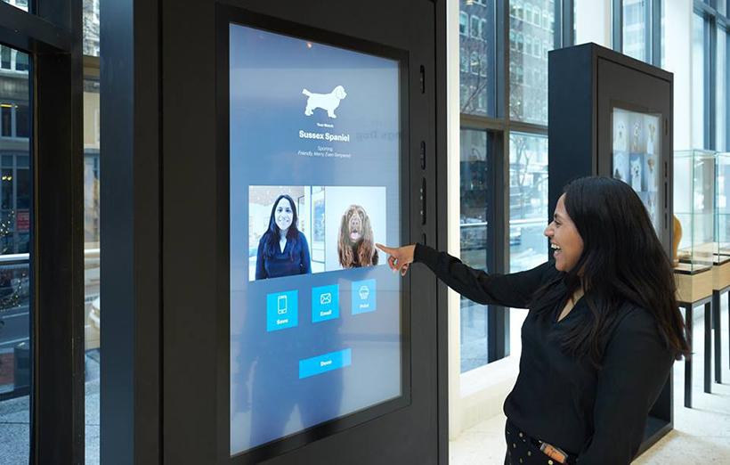 интерактивное устройство в музее собак в нью-йорке