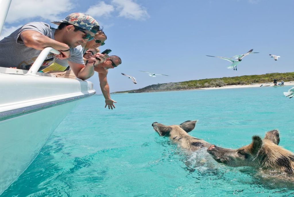 Остров свиней, Багамы