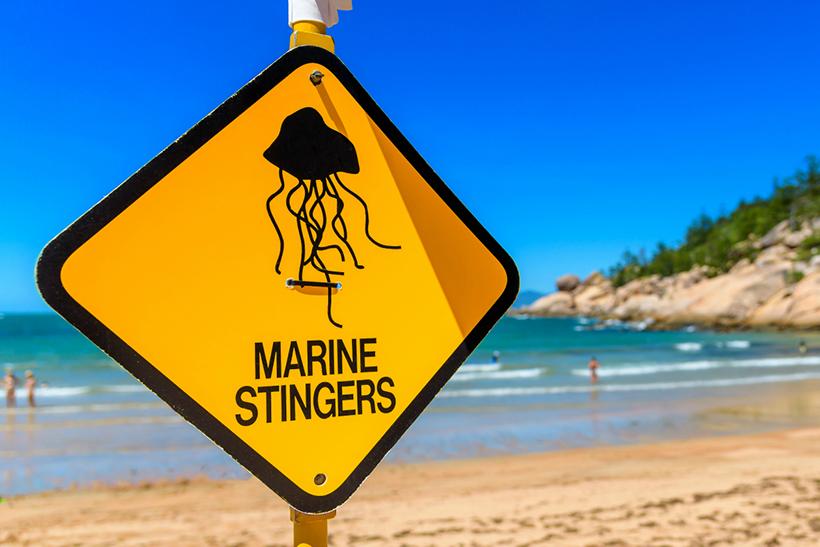 Пляжи Квинсленда, Австралия