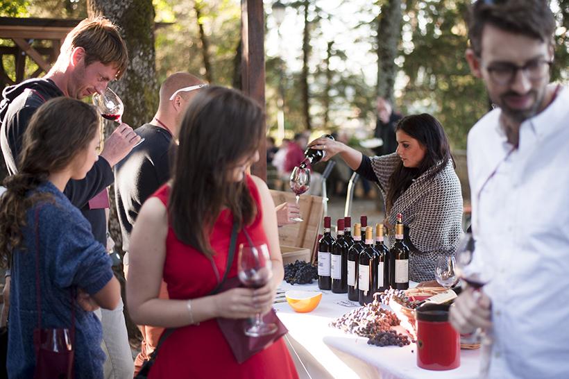 Дегустация вин в Монтефьоралле