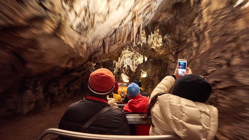 Пещеры Постойнска-Яма