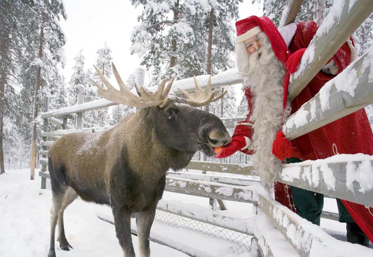 Автобусный тур «В гости к Санта Клаусу»