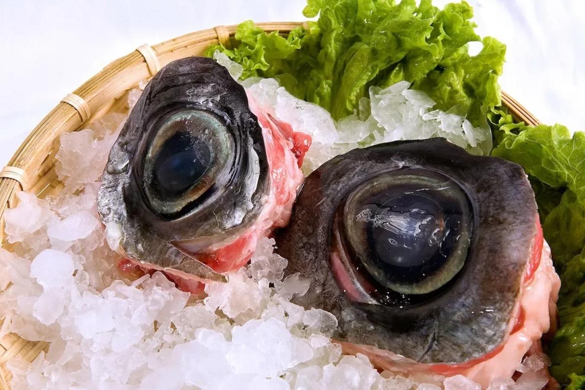 блюда глаза тунца
